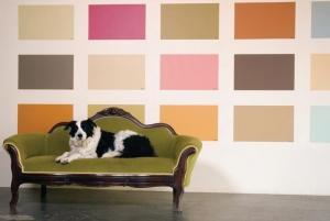 foto-projeto-arquitetura-reformas-de-casa